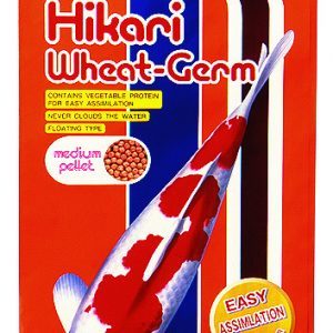 HIKARI WHEAT-GERM MEDIUM 500 GRAM