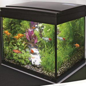 Superfish Aqua 20 LED Goldfish kit
