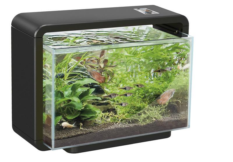 Superfish home 80 zwart koi pleasure for Aquarium reinigen
