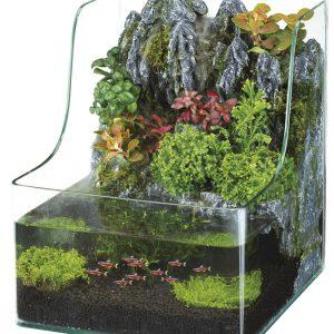 Superfish Planty 25