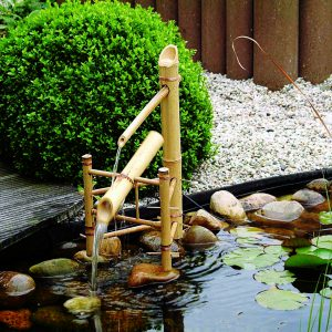 Acqua Arte set Bamboo waterornament